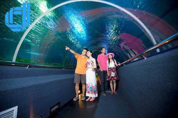3 địa điểm vui chơi tại Vinpearl Land Nha Trang không thể bỏ lỡ