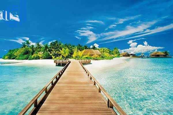 Đặt tour du lịch Nha Trang trong 1 ngày khám phá Đảo Dừa | D2tour