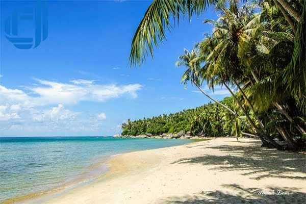 Đặt tour du lịch Nha Trang trong 1 ngày khám phá Đảo Dừa   D2tour