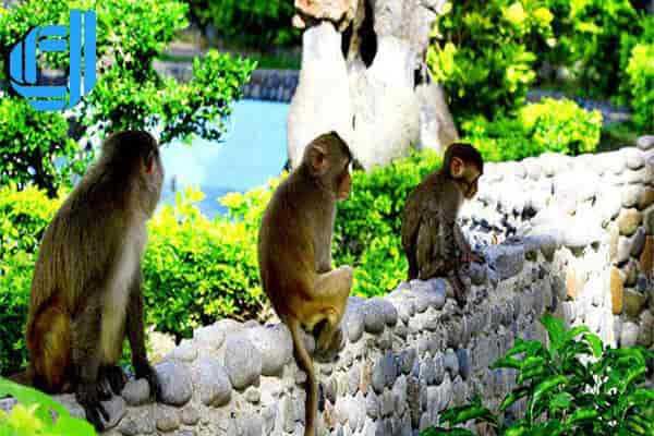 Tour du lịch Hà Nội Nha Trang 2 ngày 1 đêm lịch trình chuẩn nhất