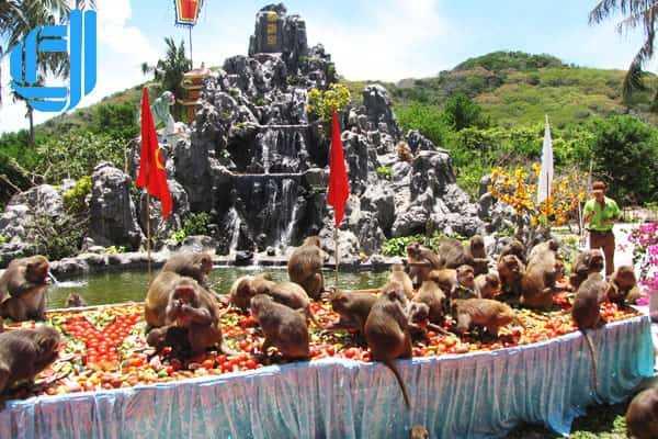 Tour du lịch Vịnh Nha Phu Nha Trang 1 ngày khởi hành hằng ngày