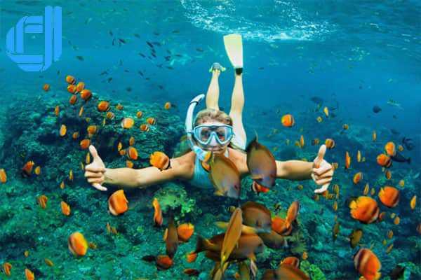 Tour Gia Lai đi Nha Trang 3 ngày 2 đêm trọn gói giá rẻ