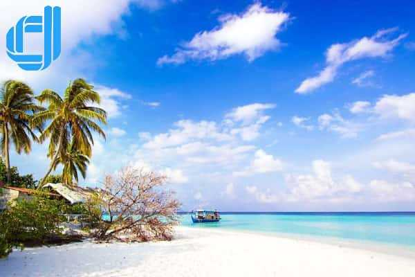 Tour lặn biển đảo Hòn Mun 1 ngày giá rẻ khởi hành hằng ngày