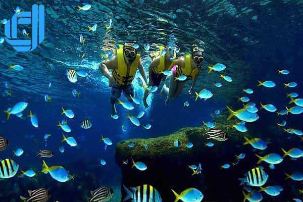 Tour du lịch Long An Nha Trang 3 ngày 2 đêm trọn gói giá rẻ